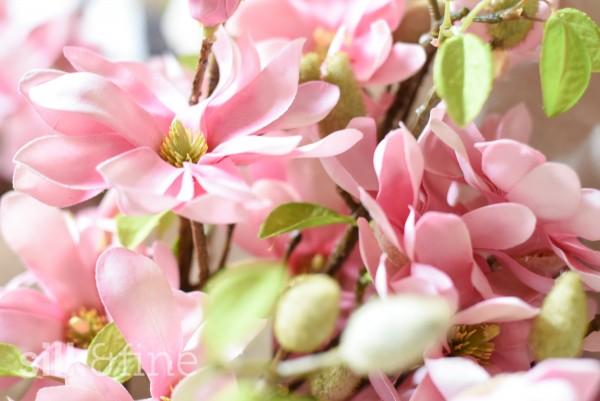 Magnolien aus Seide, rosa | Silk&Fine